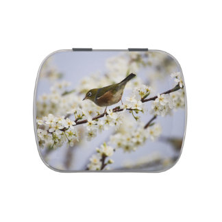 Cute Bird and Cherry Blossom Candy Tin
