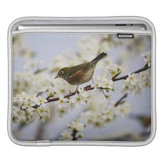 Cute Bird and Cherry Blossom iPad Sleeve
