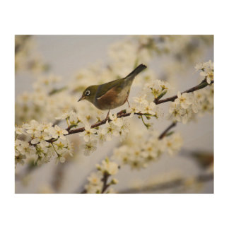 Cute Bird and Cherry Blossom Wood Wall Art