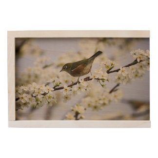 Cute Bird and Cherry Blossom Wooden Keepsake Box