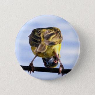 Cute Birdie Buttons