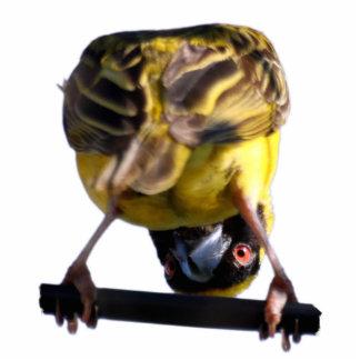 Cute Birdie Sculpture Pin Cut Outs