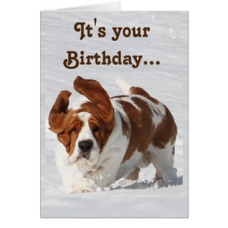 Cute Birthday Card w/Basset Hound & Champagne