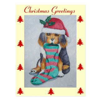 cute black and brown puppy with christmas stocking postcard