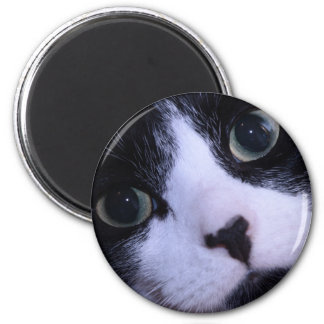Cute Black and White Cat Face 2 Inch Round Magnet