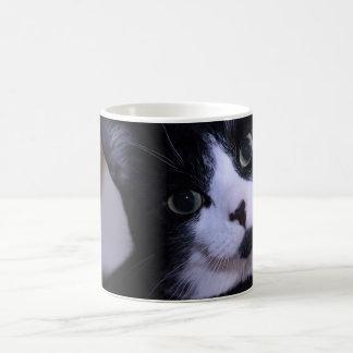 Cute Black and White Cat Face Coffee Mugs