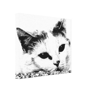 Cute Black-and-White Cat Face Photo Illustration Canvas Print
