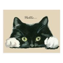 cute black and white cat hello postcard