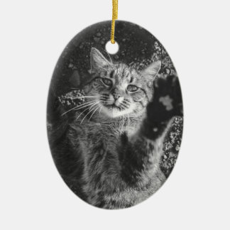 Cute Black and White Cat Hug Ceramic Ornament