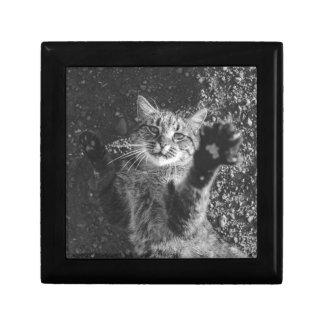 Cute Black and White Cat Hug Keepsake Box