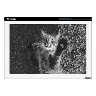 Cute Black and White Cat Hug Laptop Decal