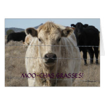 Cute Black and White Cow Thank You - Ranch or Farm Card