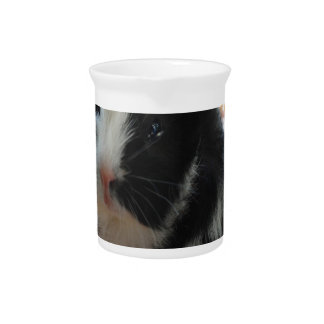 Cute Black and White Guinea Pig Beverage Pitcher