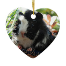 Cute Black and White Guinea Pig Ceramic Ornament