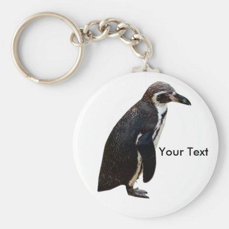 Cute Black And White Humboldt Penguin Keyring Keychain