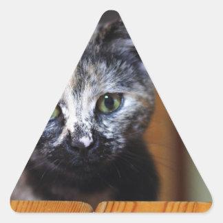 Cute Black and White Kitten Triangle Sticker