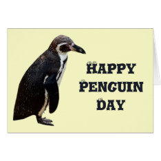 Cute Black And White Penguin Birthday Card at Zazzle