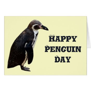 Cute Black And White Penguin Birthday Card by DigitalDreambuilder at Zazzle