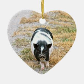 Cute Black and White Potbelly Pig Photo Ceramic Ornament