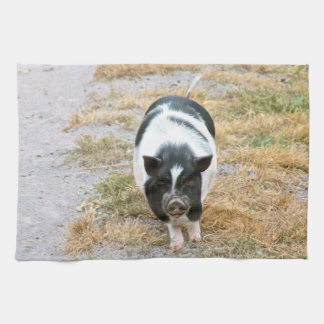Cute Black and White Potbelly Pig Photo Hand Towel
