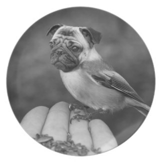 Cute Black and White Pug Bird Plate