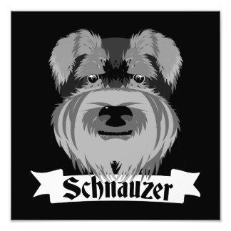 Cute Black and White Schnauzer Photo Print