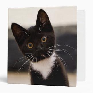 Cute Black And White Tuxedo Kitten Binder