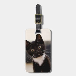 Cute Black And White Tuxedo Kitten Luggage Tag