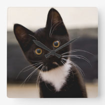 Cute Black And White Tuxedo Kitten Square Wall Clock