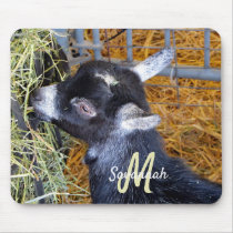 Cute Black Baby Goat Eating Hay Photo Monogram Mouse Pad