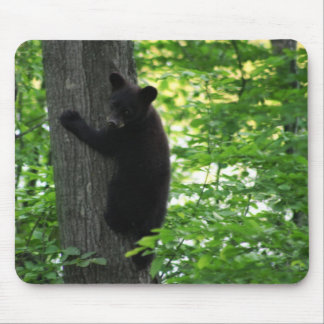Cute Black Bear Cub Climbing On The Tree In Forest Mouse Pads