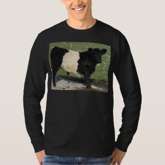 Cute Black Belted Galloway Calf Shirts