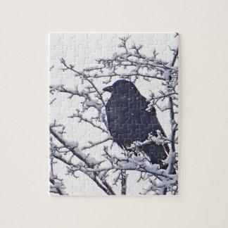 Cute black bird in snowy branches jigsaw puzzle