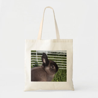 Cute black bunny on green grasses budget tote bag
