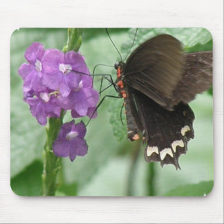 Cute Black Butterfly Mouse Pads