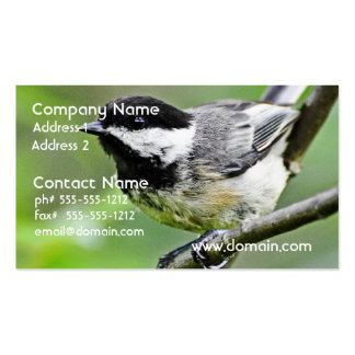 Cute Black Capped Chickadee Business Card Template