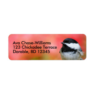 Cute Black-Capped Chickadee on the Apple Tree Label