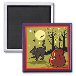 Cute black cat frighten by a pumpkin 2 inch square magnet