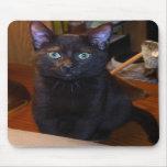 Cute  Black Cat  Mousepad