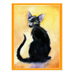 Cute black cat or kitten postcard