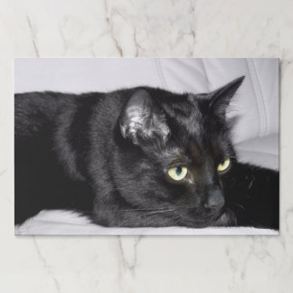 Cute Black Cat Portrait Paper Placemat