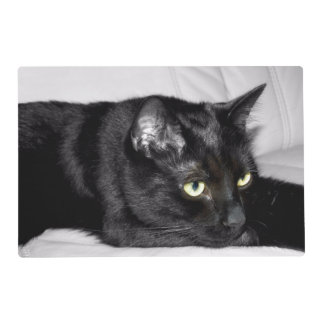 Cute Black Cat Portrait Placemat