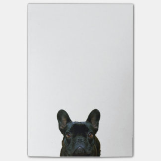 Cute Black French Bulldog Photograph Post-it Notes
