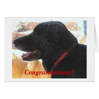 Cute Black Lab Dog Congratulations DVM Graduation Card