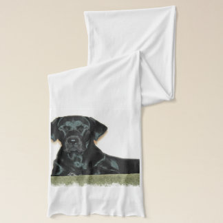 Cute Black Lab Scarf
