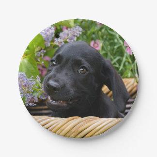 Cute Black Labrador Retriever Dog Puppy Pet Photo Paper Plate