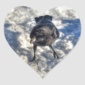 Cute Black Raven in the Snow Photo Heart Stickers