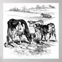 Cute black white farm cows decor poster vintage