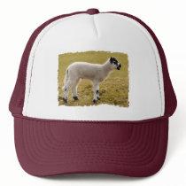 Cute Black White Lamb Bleating Baby Sheep Trucker Hat