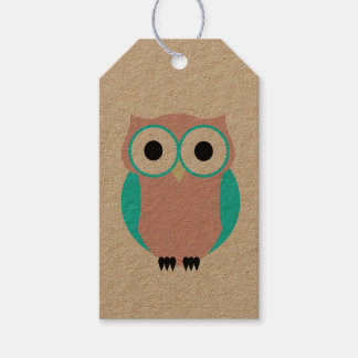 Cute Blue And Pink Owls Baby Shower Gift Tag Pack Of Gift Tags